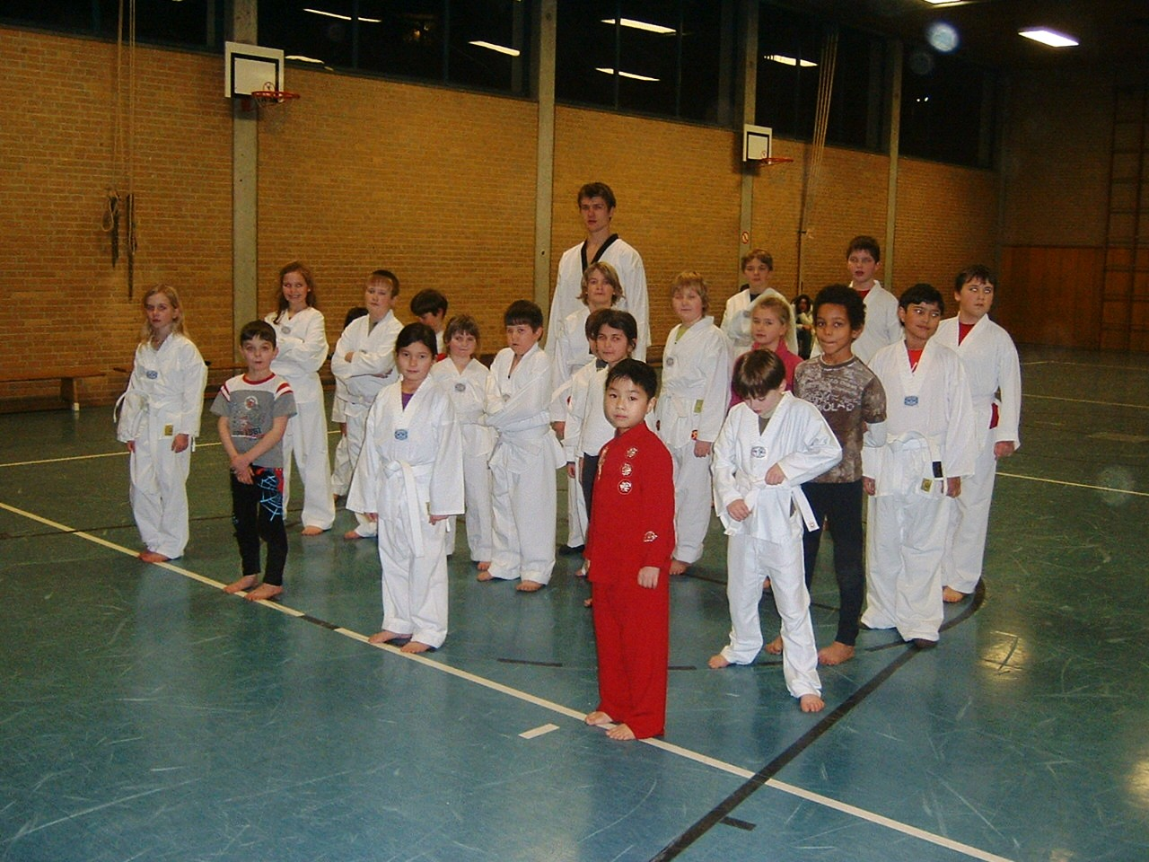 Taekwondo2010
